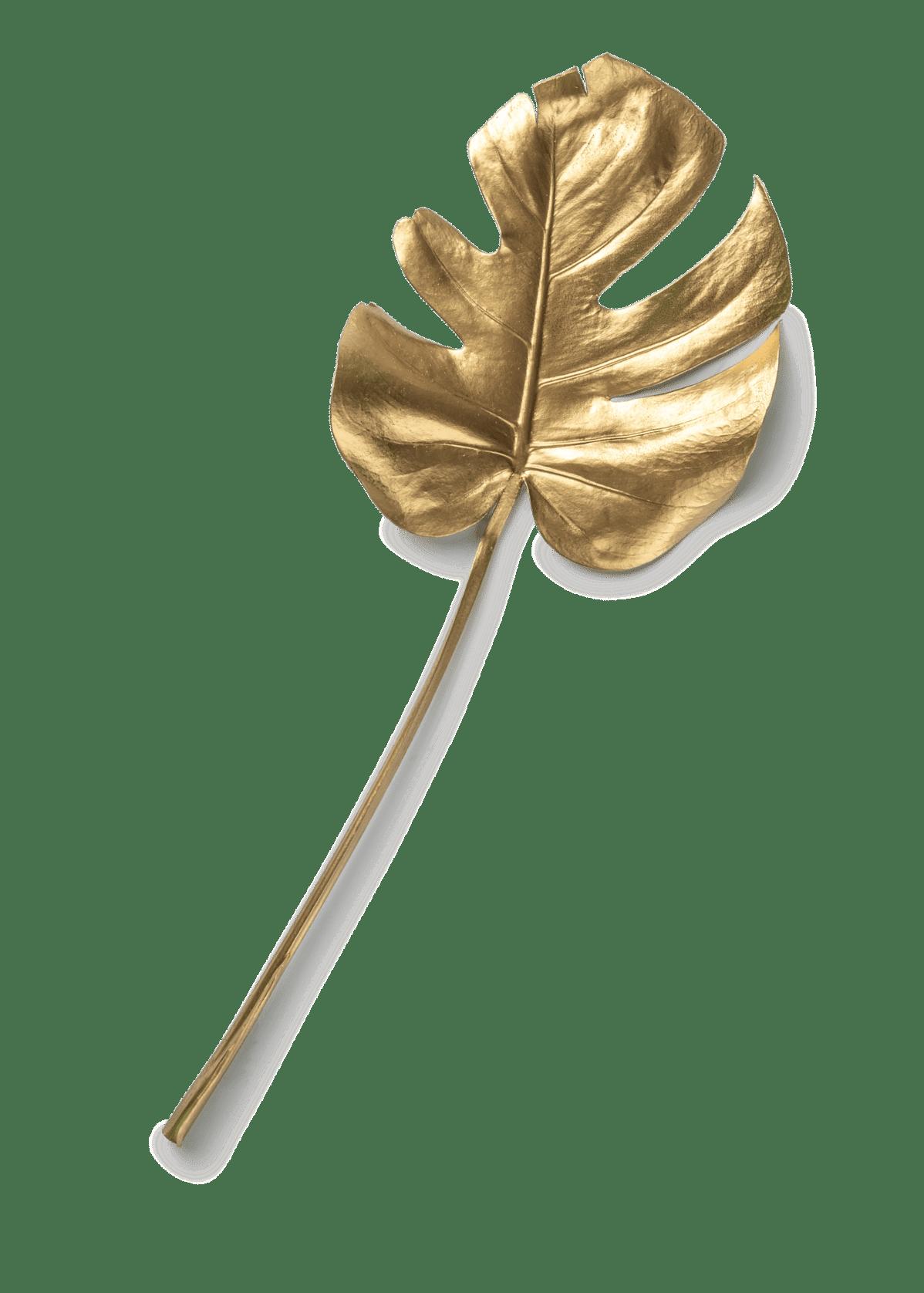 Leistungen-Leaf-component@2x-min